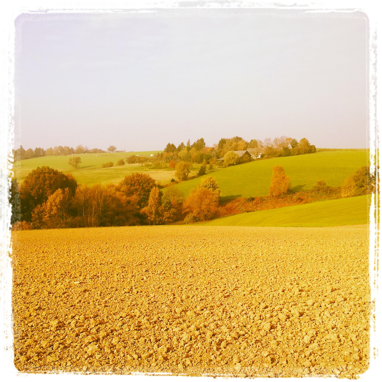 Heiligenhaus im Herbst - Blickrichtung Isenbügel